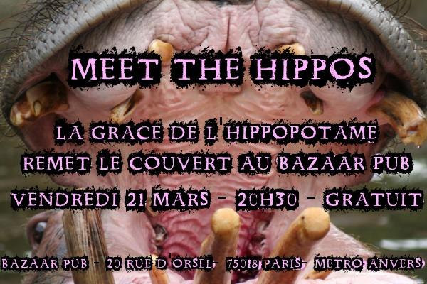 flyer fanfare la grâce de l'hippopotame bazaar café mars 2014